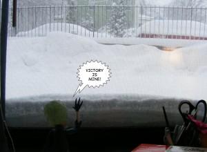 snowm2