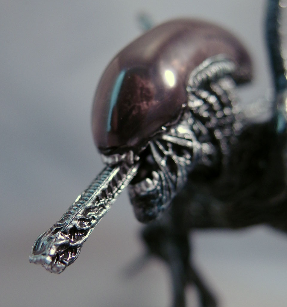My S.H.MonsterArts Alien Warrior review is up at CollectionDX